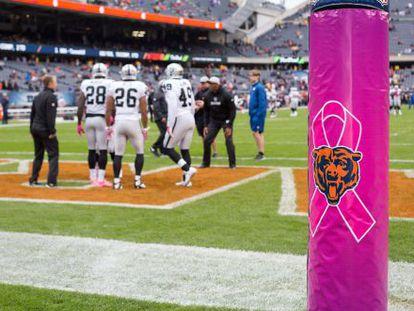 Un lazo rosa, símbolo de la lucha contra el cáncer de mama, en el estadio de los Chicago Bears, con motivo del mes de prevención de este tumor que se conmemora en EE UU.