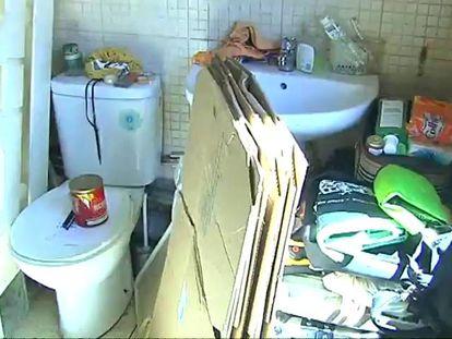 Un pequeño muro translúcido separa el baño de la nevera, la ducha y la cama.