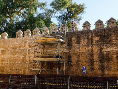 Trabajos de limpieza y consolidación de la muralla que une el Arco de la Macarena con la puerta de Córdoba, este miércoles en Sevilla. / ALEJANDRO RUESGA