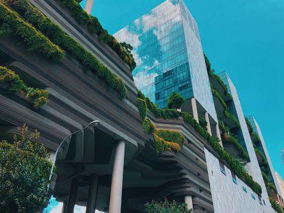 Edificios con zonas verdes en Singapur.