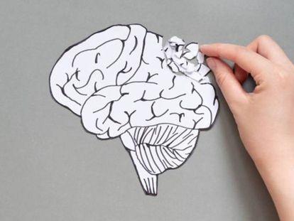 El envejecimiento cerebral es inevitable, pero se puede retrasar