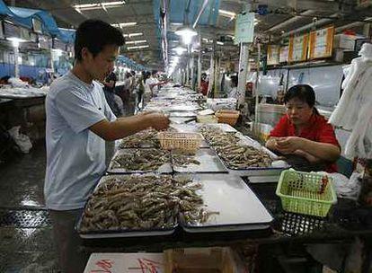 Pescadería en un mercado de Pekín.