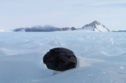 Un meteorito hallado en la Antártida, en una imagen de archivo.