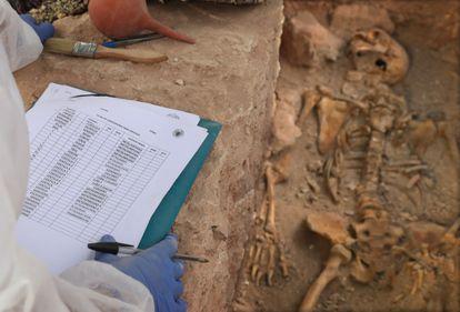 Trabajos de exhumacion de una fosa común anexa al cementerio de Almagro, en Ciudad Real, realizada el pasado mayo.