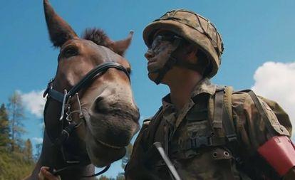 Un soldado de la brigada alemana de Infantería con una de las mulas, en una imagen del vídeo de la OTAN.
