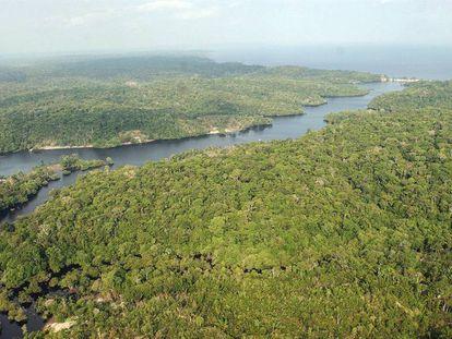Foto aérea de una parte de la región amazónica.