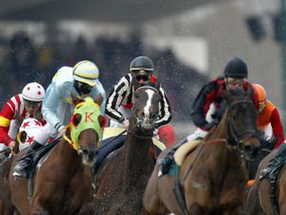 Carrera de caballos en el hipódromo de la Zarzuela.