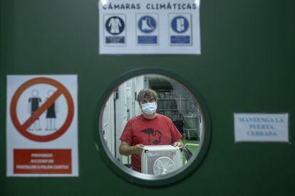 El investigador Jordi Figuerola, con un contenedor de mosquitos en la sede de la Estación Biológica de Doñana (CSIC) en Sevilla, en septiembre de 2020.