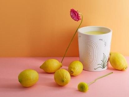 Vela de jardín de Diptyque con esencia esencia de citronela de la colección, Summer Essentials