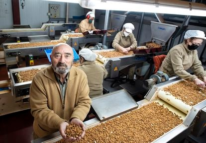 Francisco Morales poses at the Zamoranos factory where almonds are treated.