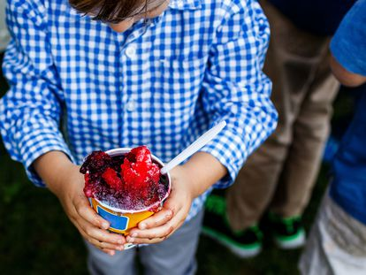 Un niño sujeta un sorbete de frutos rojos.