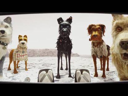 Fotograma de la película 'Isla de perros', de Wes Anderson. En vídeo, el tráiler de la película.