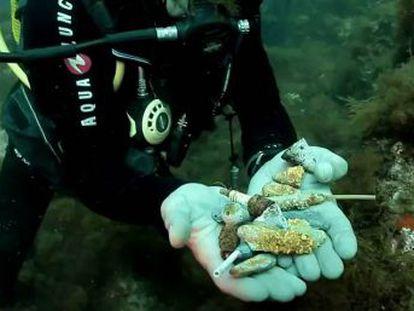 La pesca recreativa deja una alta cantidad de residuos tóxicos que se acumulan en el fondo marino