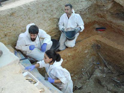 El equipo que realiza las exhumaciones en la fosa 113 de Paterna hoy.