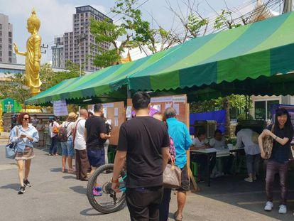 El colegio electoral en el templo That Thong de Bangkok. En vídeo, imágenes del día de las elecciones