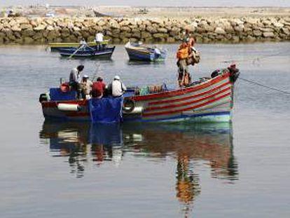 Varios pescadores marroquíes pescan en Rabat, el pasado septiembre. EFE/Archivo