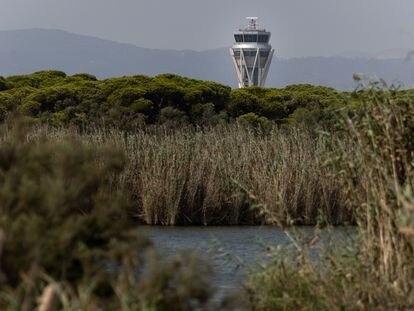 La torre de control del aeropuerto de El Prat junto a la laguna del espacio natural de la Ricarda.