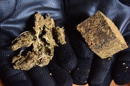 """Un traficante muestra la marihuana colombiana (izquierda), conocida como """"colombinha"""" en São Paulo, y la marihuana paraguaya, conocida como """"prensado""""."""