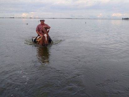 Un hombre a caballo cruza un campo inunado en General Villegas, provincia de Buenos Aires.