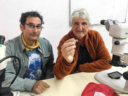 César Laplana y Enrique Baquedano con el molar de 'Mimomys savini'.