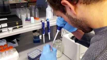Un investigador en un laboratorio de la Universidad de Castilla-La Mancha.