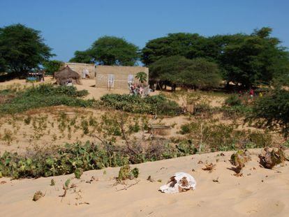 En Beigna Penda sus habitantes de origen nómada han comenzado a utilizar ladrillo y cemento en la construcción de sus casas. La mejor señal de que al fijar las arenas de las dunas del desierto, también se han fijado en él sus habitantes.