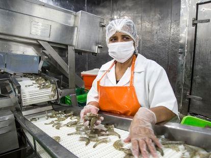Empleada de una empresa de empaque de camarón en la ciudad peruana de Tumbes, junto a la frontera con Ecuador.