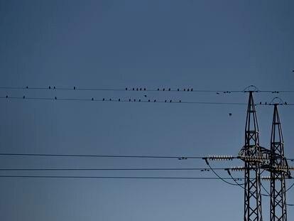 Tendido eléctrico a las afueras de Sevilla, en una foto de enero.