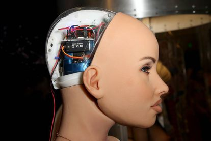 Detalle de los circuitos de la cabeza de una Harmony RealDoll