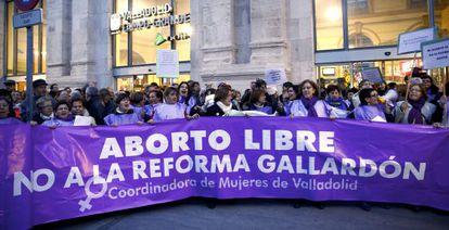 Manifestación contra la reforma del aborto en Valladolid, el pasado 31 de febrero.