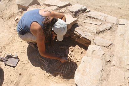 Una arqueóloga extrae los restos de un caprino en el yacimiento de El Castillón.