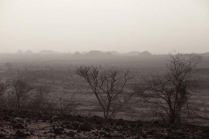 Llanura en proceso de desertificación cerca de Yayá (Níger).