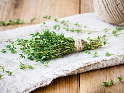Durante siglos, el tomillo se usó en ceremonias funerarias y como hierba medicinal.