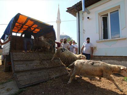 Tártaros de Crimea preparan el sacrificio ritual durante una festividad musulmana, el 31 de julio.