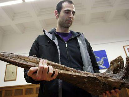 El investigador Ismael Miján, con la cabeza del fósil