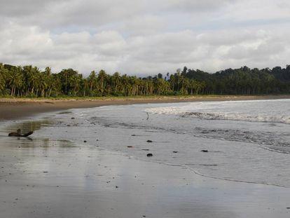 Playa de Jurubirá a la que llegan 'pacas' de droga durante la madrugada.