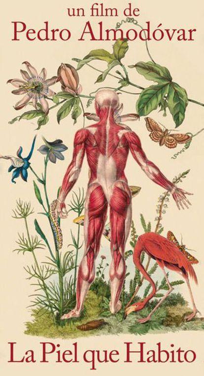 Póster promocional de 'La piel que habito' (2011), diseñado por Juan Gatti y parte de su serie 'Ciencias naturales'.