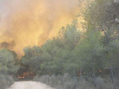 Un incendio en Paterna y Riba-roja obliga a desalojar cerca de 400 chalets