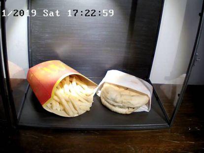 Captura de la 'webcam' del Snotra House, este sábado.