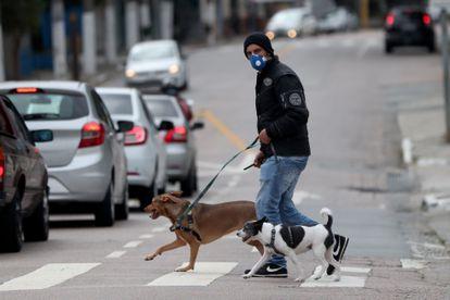 Un hombre con tapabocas pase a sus perros en una calle de Sao Paulo (Brasil).