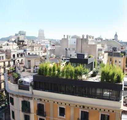 Cubierta ajardinada de la Sede de La Casa por el Tejado en el Ensanche de Barcelona realizada por La Casa por el Tejado.