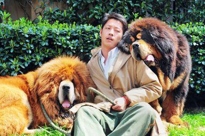 El empresario millonario que el pasado 18 de marzo compró estos dos mastines tibetanos por casi dos millones de euros.