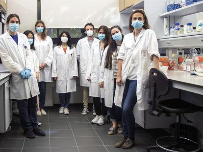 El grupo de investigación que ha realizado los estudios sobre presencia de coronavirus en leche materna.
