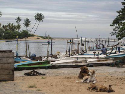 La costa de Matara, al sur de Sri Lanka, que fue arrasada por un tsunami en 2004.
