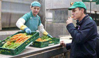 Pedro Sánchez en su visita a la cooperativa agrícola Frusana en Sanlúcar de Barrameda, Cádiz, este martes.