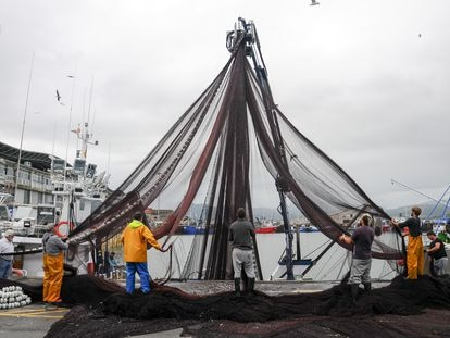 Pescadores en el puerto cántabro de Santoña.