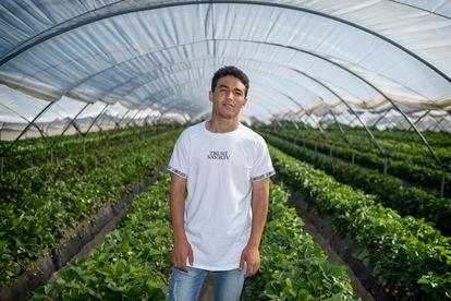Abdelaziz Zeriouh, un joven marroquí de 20 años, ha vuelto a los campos onubenses para recoger frutos rojos, aunque su objetivo es ser carpintero.