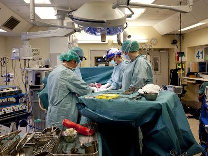Imagen del equipo responsable del nacimiento realizando un trasplante de útero en abril.