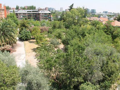 La zona verde aledaña al convento de las Damas Apostólicas.
