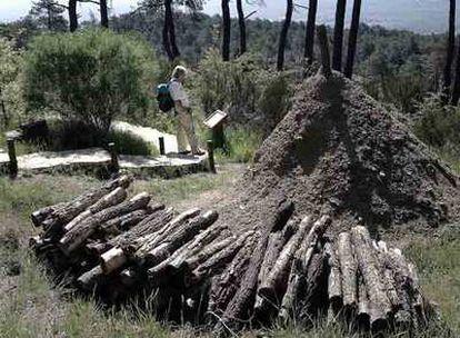 Reconstrucción de una carbonera en el arboreto Luis Ceballos de San Lorenzo de El Escorial.